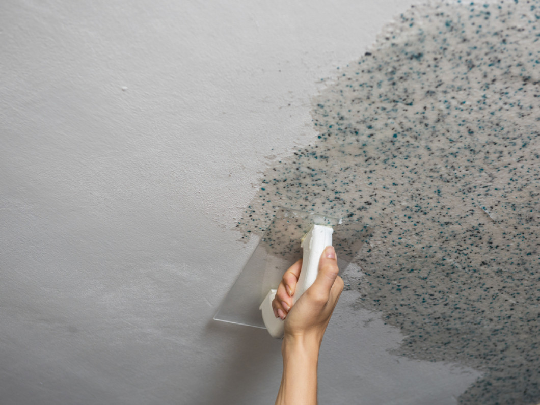 Don't Let Creeping Mold Jeopardize Your Business